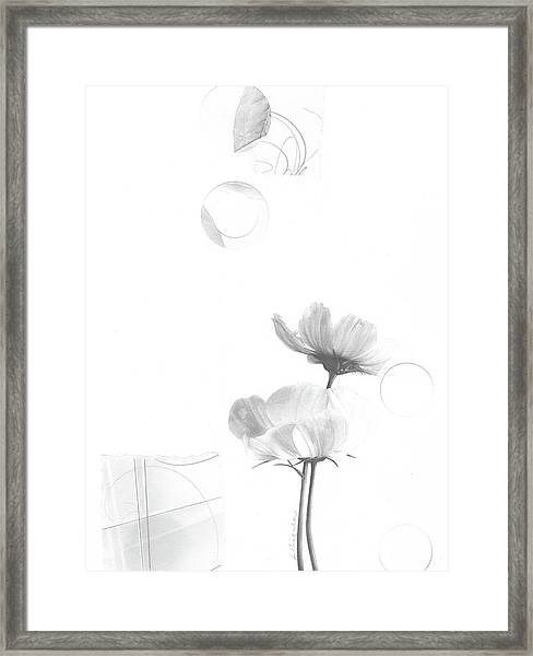Bloom No. 1 Framed Print