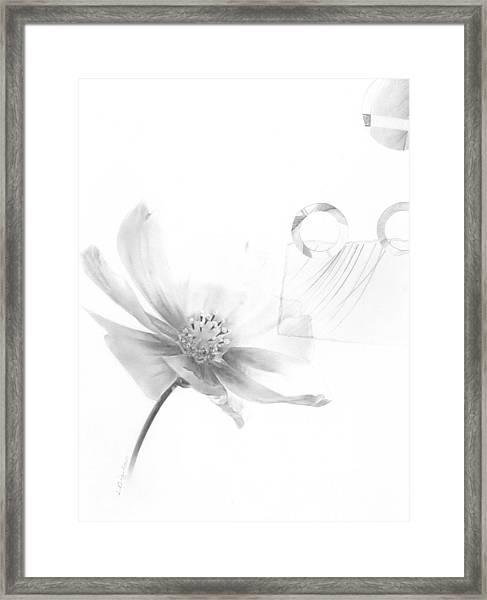 Bloom No. 6 Framed Print