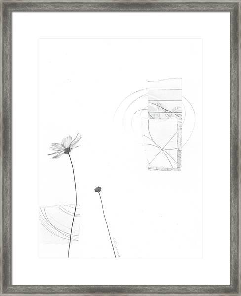 Bloom No. 10 Framed Print