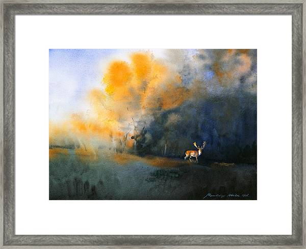 Blue And Orange Framed Print