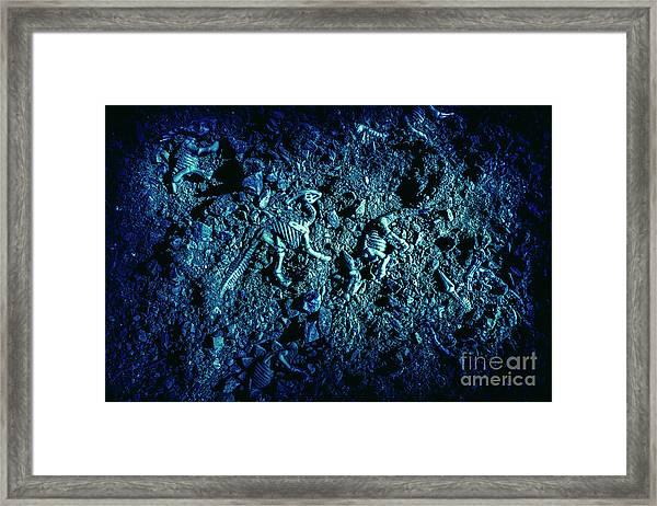 Blue Archaeology Framed Print
