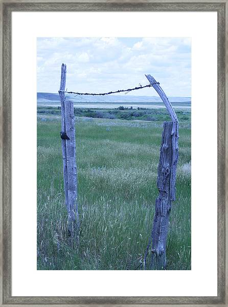 Blue Barbwire Framed Print