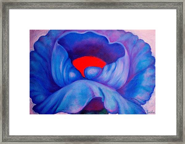 Blue Bloom Framed Print