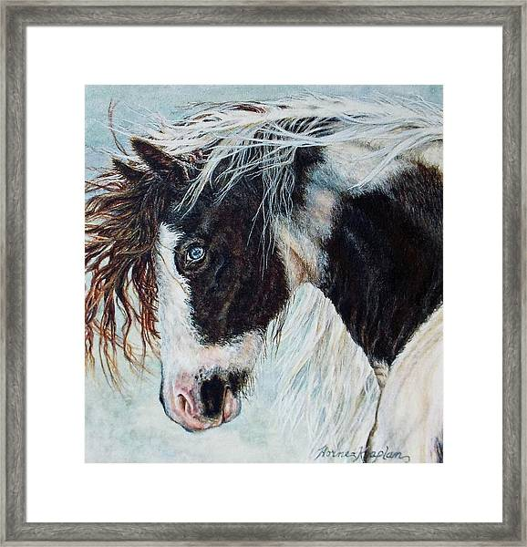 Blue Eyed Storm Framed Print