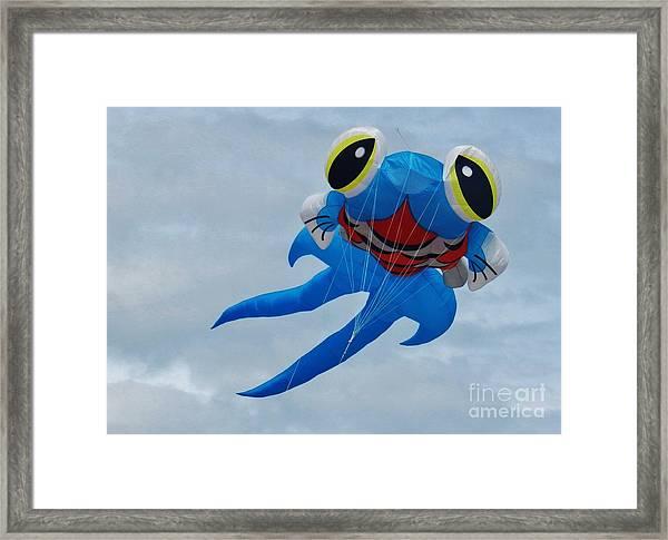 Blue Fish Kite Framed Print