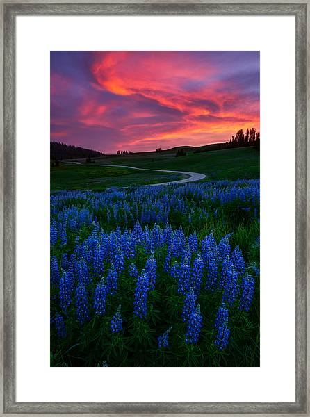 Framed Print featuring the photograph Blue Flame by Dustin  LeFevre