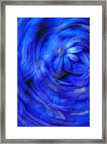 Blue Floral Swirl Framed Print