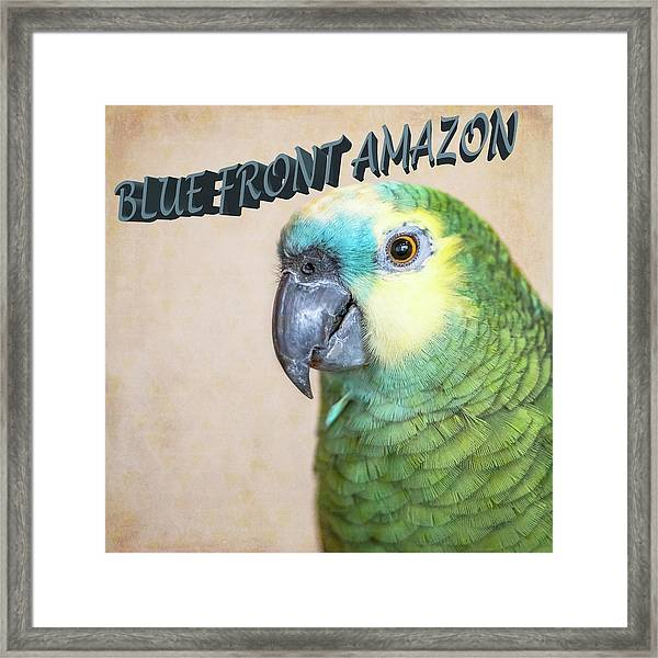 Blue Front Amazon Framed Print