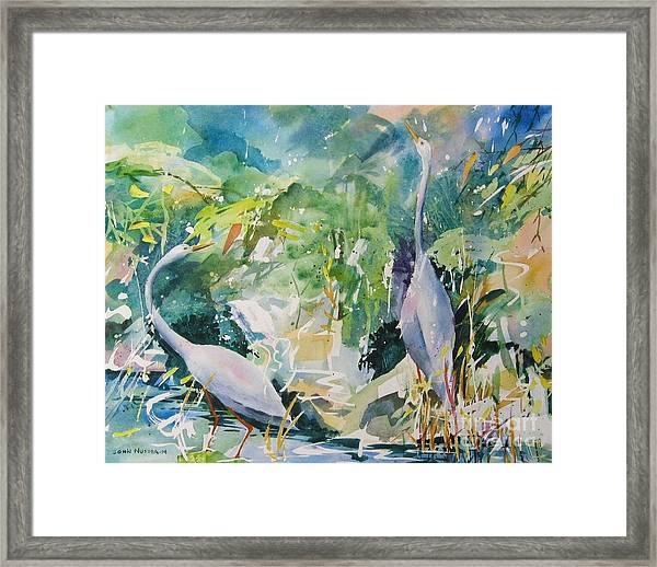 Blue Herons Framed Print