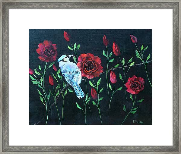 Blue Jay In Rose Bush Framed Print