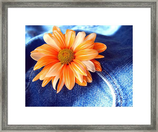 Blue Jeans And Daisies Framed Print by Wendy Mogul