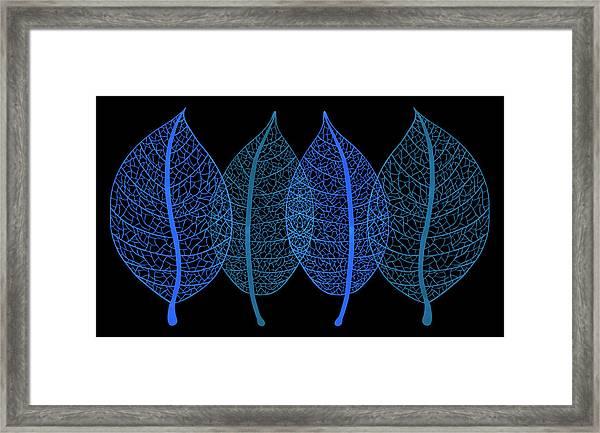 Blue Leaves Framed Print by Frank Tschakert