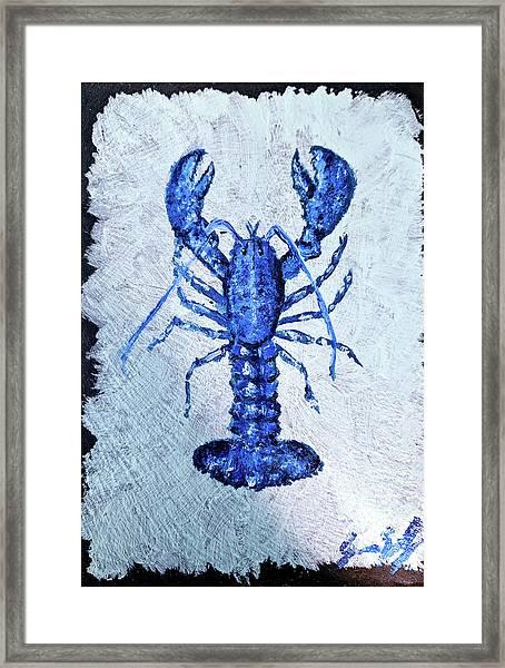 Blue Lobster 1 Framed Print