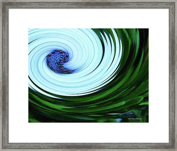 Blue On Flower Framed Print