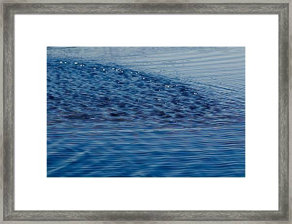Blue Period Framed Print