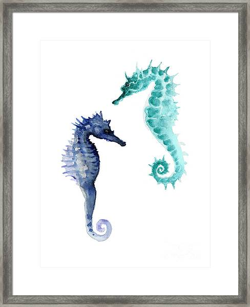 Blue Seahorses Watercolor Painting Framed Print