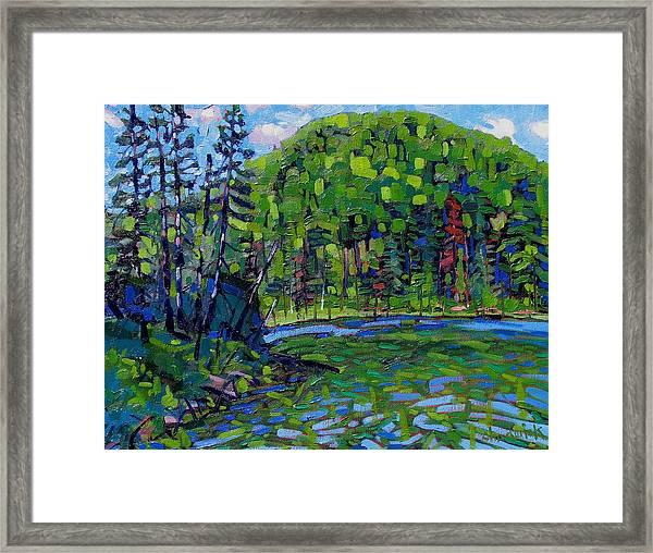 Blue Sky Greens Framed Print