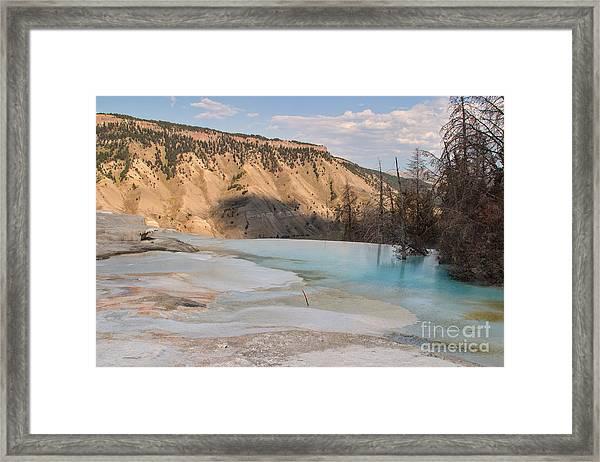 Blue Spring Framed Print