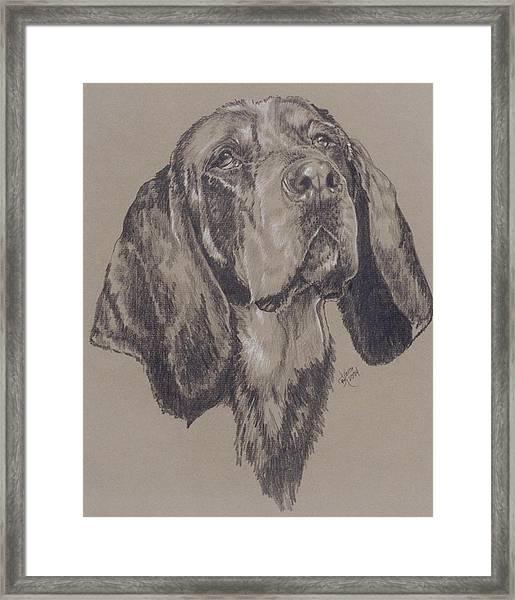 Bluetick Coonhound Framed Print