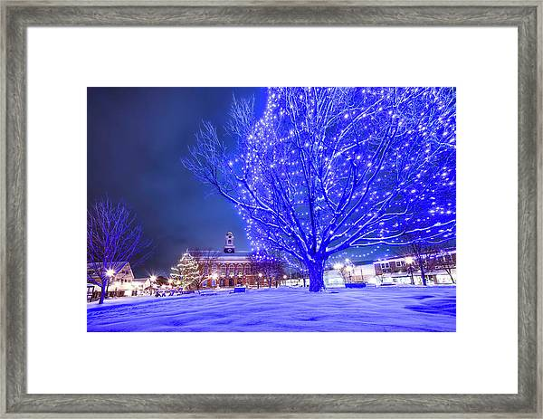 Blue Tree - The Final Year Framed Print