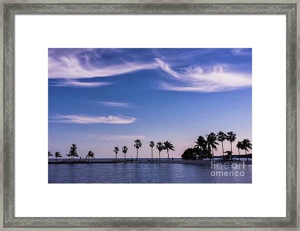 Blue Tropics Framed Print