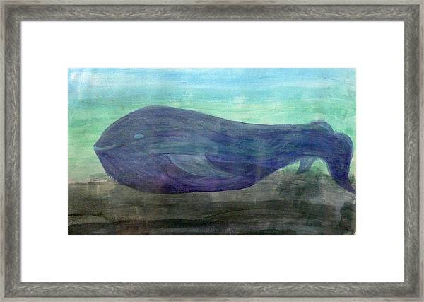 Blue Whale Framed Print