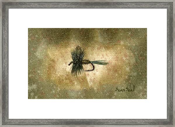 Blue Winged Olive Framed Print