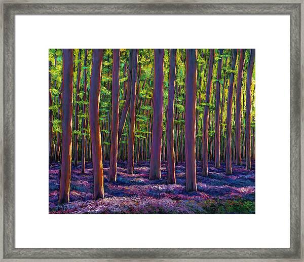 Bluebells And Forest Framed Print