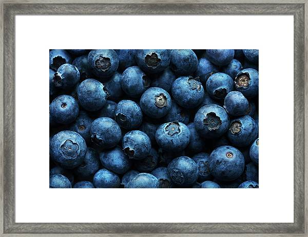 Blueberries Background Close-up Framed Print