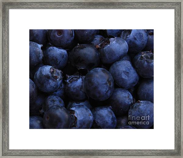 Blueberries Close-up - Horizontal Framed Print
