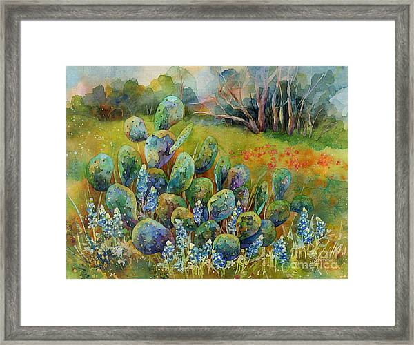 Bluebonnets And Cactus Framed Print