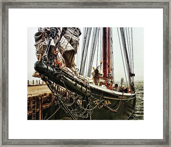 Bluenose Framed Print