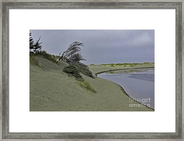 Bodega Dunes Framed Print