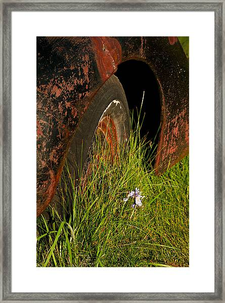 Framed Print featuring the photograph Bodie 13 by Catherine Sobredo
