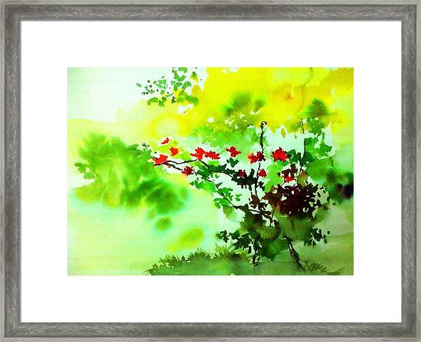 Boganwel Framed Print
