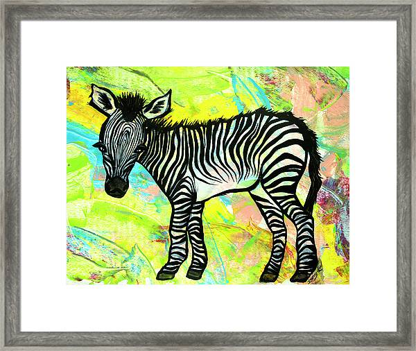 Bold And Bright Framed Print