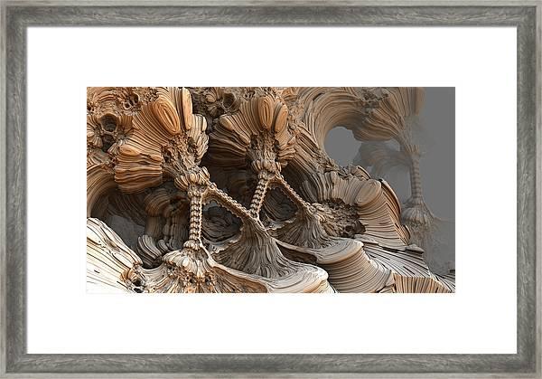 Bone Mountain Framed Print