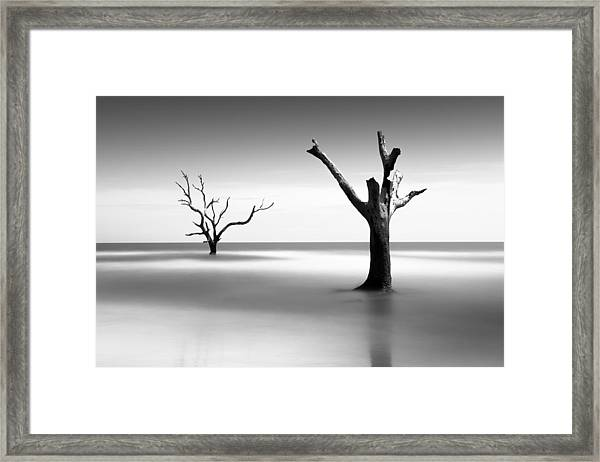 Boneyard Beach V Framed Print