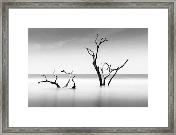 Boneyard Beach Viii Framed Print