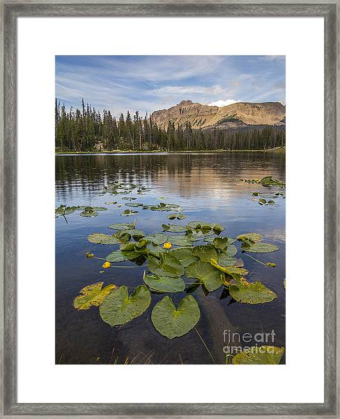 Bonnie Lake And Hayden Peak Framed Print