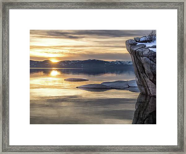 Bonsai Sunset Framed Print