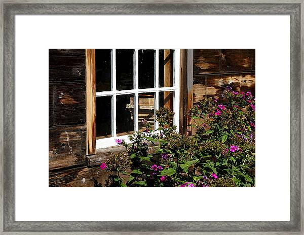 Books In The Window Framed Print by Lois Lepisto