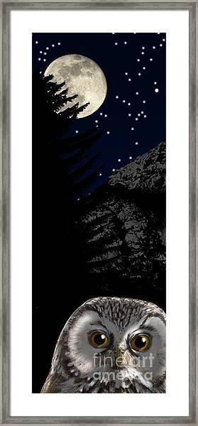 Boreal Owl Or Tengmalm's Owl - Aegolius Funereus - Nationalpark Gesaeuse Xeis Framed Print