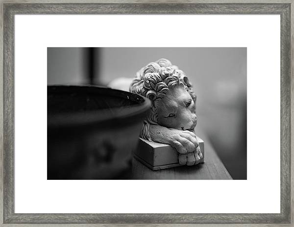 Framed Print featuring the photograph Bored by Break The Silhouette