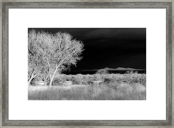 Framed Print featuring the photograph Bosque Del Apache - Infrared by Britt Runyon