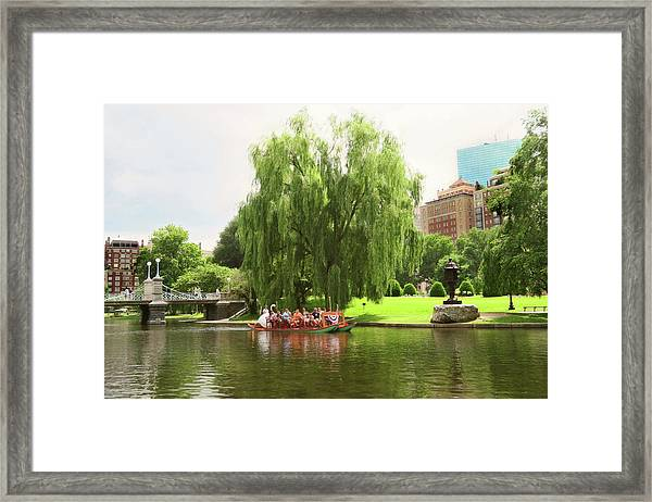 Boston Garden Swan Boat Framed Print