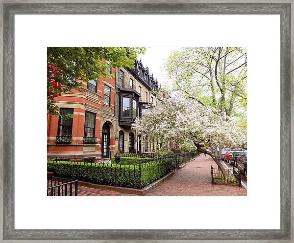 Boston Spring Framed Print
