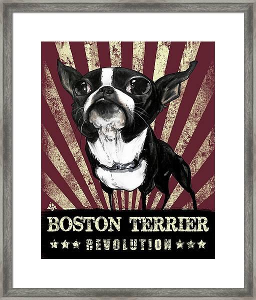 Boston Terrier Revolution Framed Print