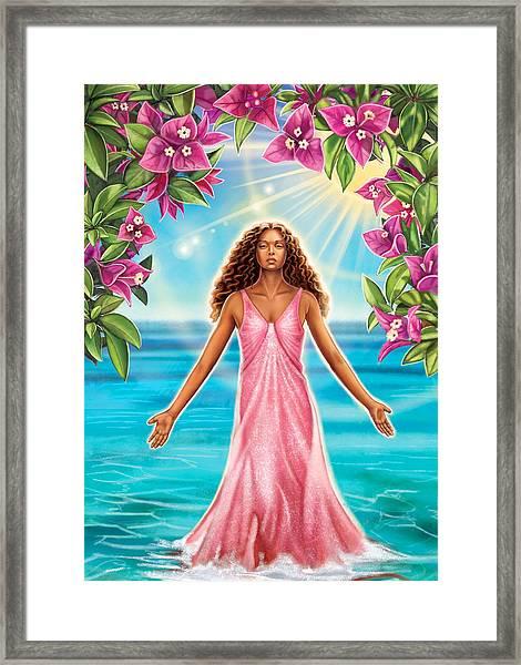 Bougainvillea - Purify Framed Print