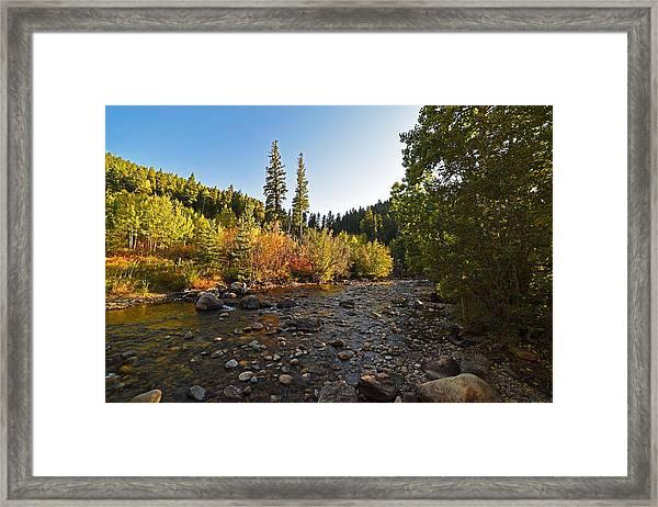 Boulder Colorado Canyon Creek Fall Foliage Framed Print